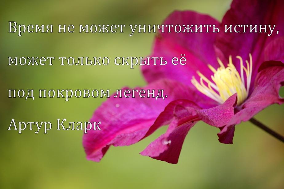 _MG_5477